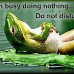 I am busy doing nothing... Do not disturb.