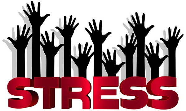 How Would The World Be If Stress Did Not Exist?